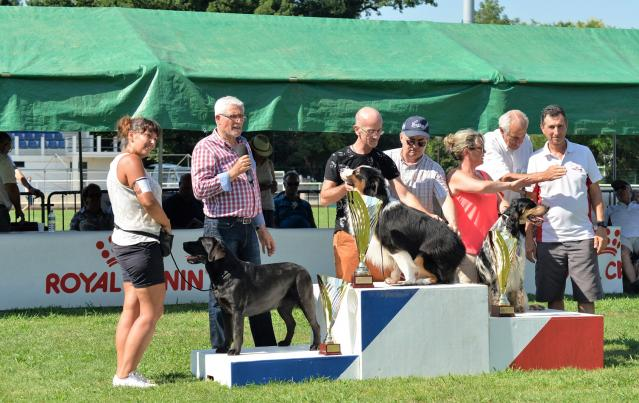 Expo canine Cahors 2018